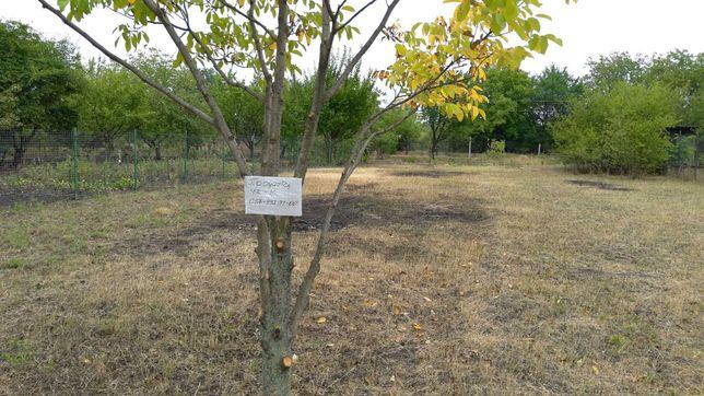 Садовый участок в товариществе РТС (район ХТЗ)