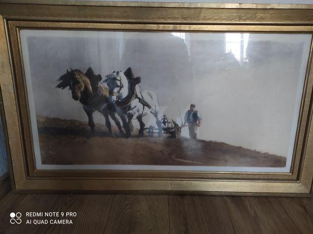 Obraz  nieznany malarz