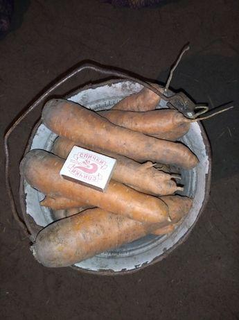 Продам морковку!