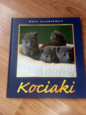 Książka Kociaki