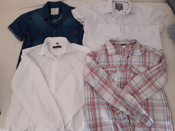 Zestaw koszul 146/152