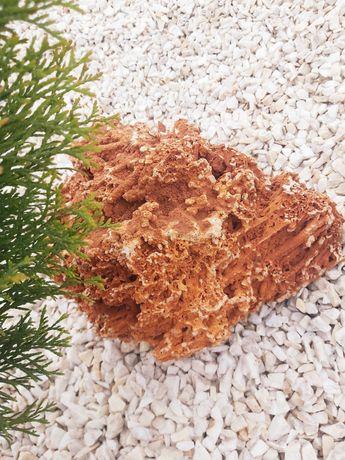 Kamień ozdobny Spagetti, do ogrodu, akwarium, terrarium