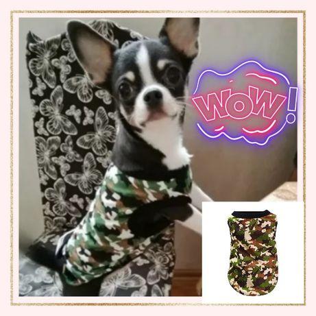NowoŚć Bluzka Moro~ Styl Militarny Dla zwierząt.