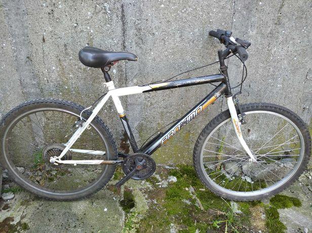 Rower górski na kółkach 24
