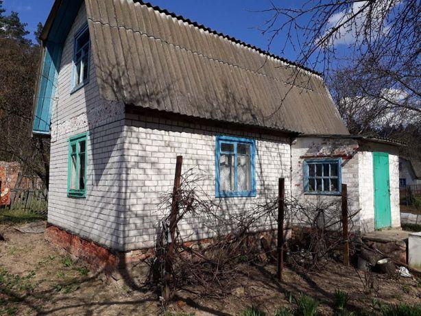 Продам Дачу в Березанке Черниговский р-н 8 соток