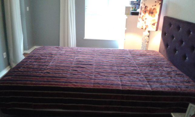 Colcha cama lilás e bordeaux. Gato preto.