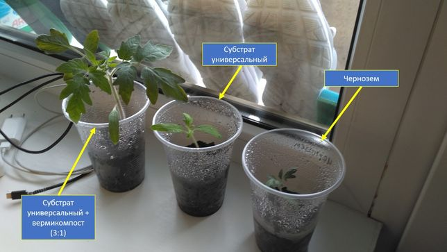 Биогумус. Самое эффективное органическое удобрение, фасовка по 10 л.