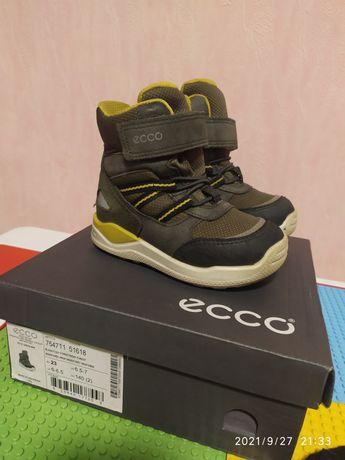 Зимние ботинки на мальчика ECCO 23 р