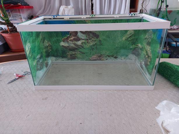 Aquário para tartarugas ou peixes