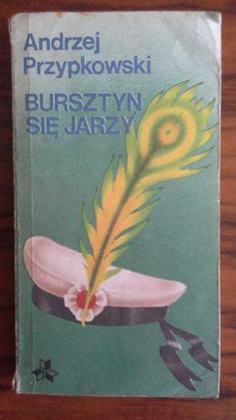 Bursztyn się jarzy - Andrzej Przypkowski
