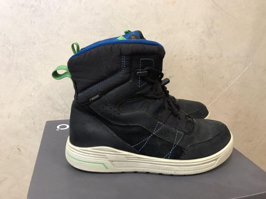 Зимние ботинки,кроссовки Ecco Urban 37, 23cм Хмельницкий - изображение 1