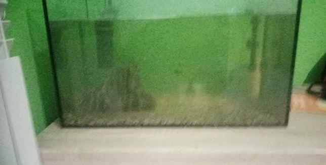Akwarium na rybki