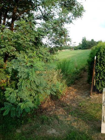 Działka rolna 3.63 ha