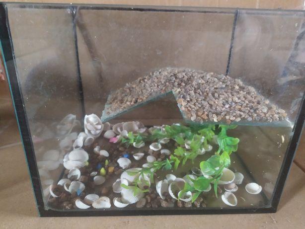 Тераріум-акваріум