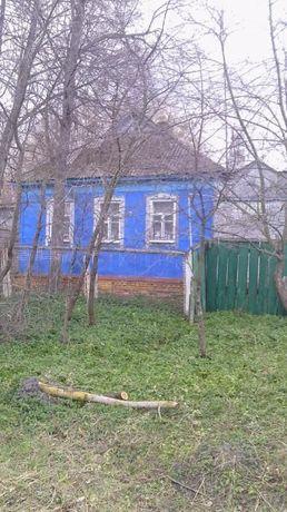 Продается дом с участком в с. Нижняя Сыроватка!