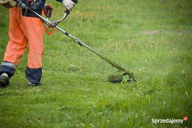 Koszenie trawy. Pracę porządkowe na działce.