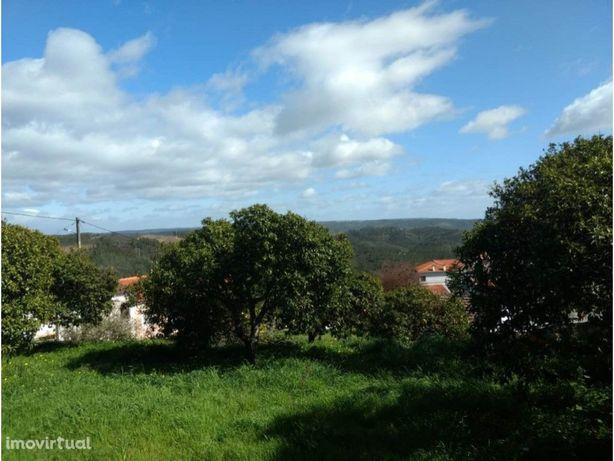 Quinta T5 com grande pomar - Vila Velha de Ródão