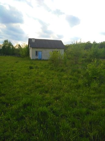 Будинок у селі Нижні Гаї