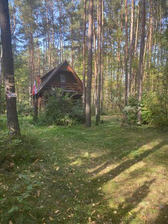 Działka z domem całorocznym drewnianym - Jamborek ok. Łasku