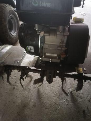 Glebogryzarka Cedrus benzyna