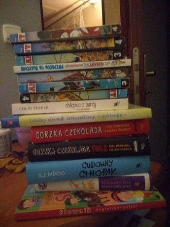 Książki dla dzieci, puzzle i zabawki