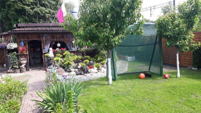 Ogródek dzialkowy