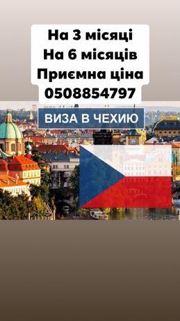 Чеська робоча віза Виза в чехію на 3 місяці на 6 місяців