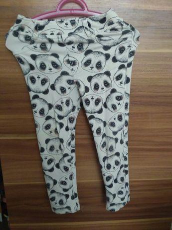 Лосіни штани ведмедик панда H&M