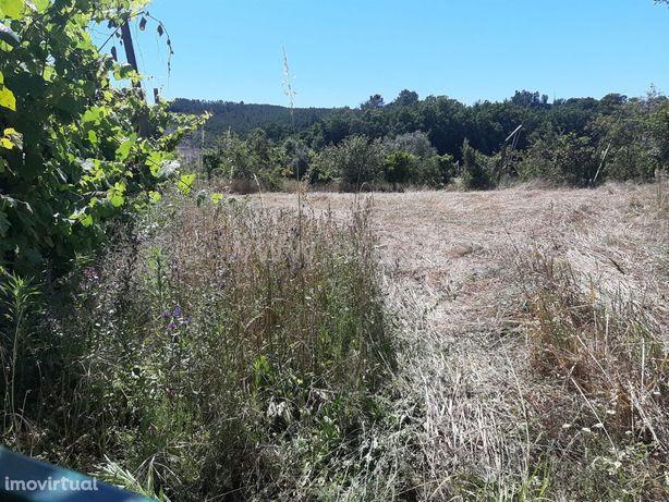Terreno agrícola com 3.600 m2 em Cabeceiras de Basto