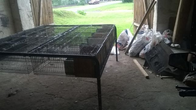 klatki na króliki