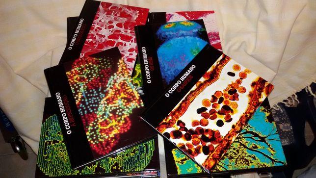 """Colecção de livros """"Corpo Humano"""""""