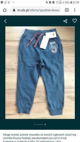 Spodnie dresowe 122 coccodrillo