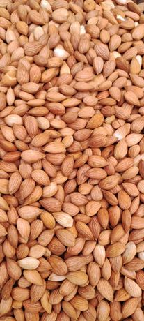 Косточка абрикоса, орехи, сухофрукты, СУПЕРФУДЫ