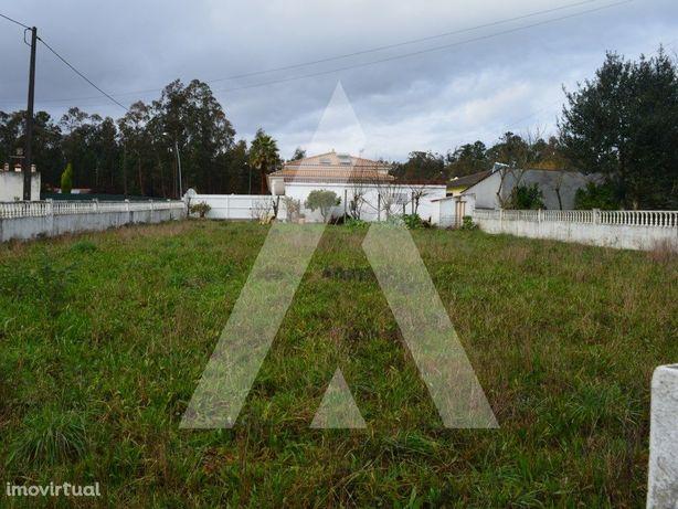 Terreno para construção de moradia na Macida - Macinhata ...