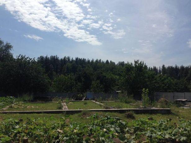 Диброва участок, с электричеством,возле леса