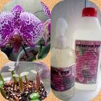 Спрей ECO Orchid FSN -Туман для орхидей и тилландсий с серебром