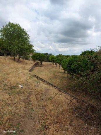 Terreno Agrícola - Vila de Frades