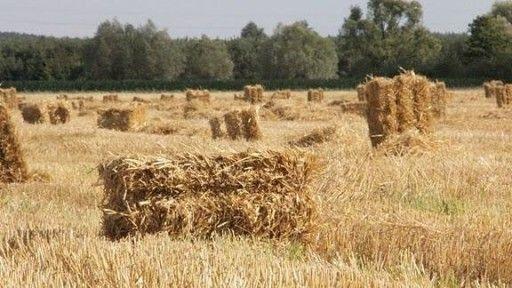 słoma kostka z gospodarstwa rolnego