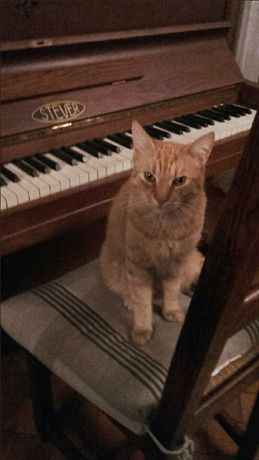 Pianino retro