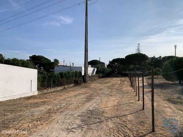Terreno - 1000 m²