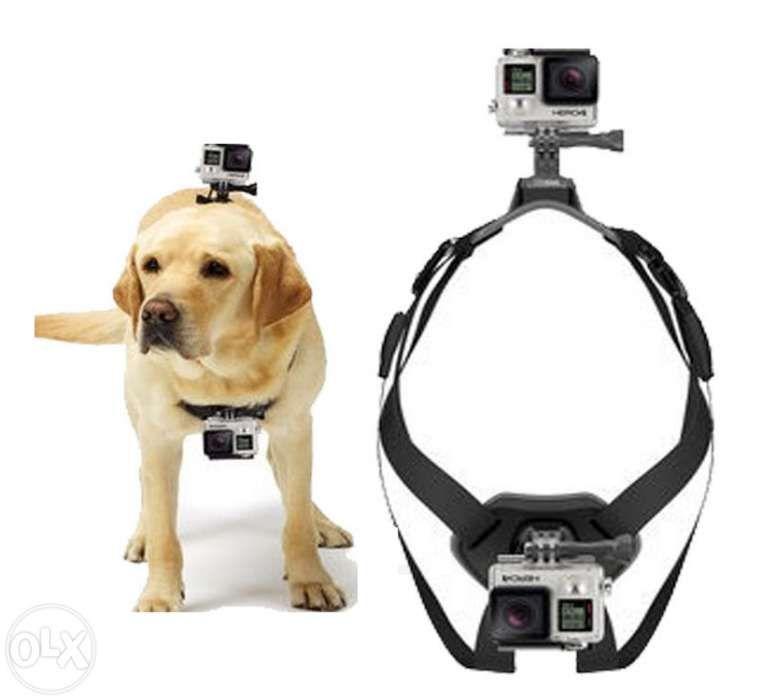Arnês para cão Gopro SJCAM - Novo - Portes Grátis Faro - imagem 1