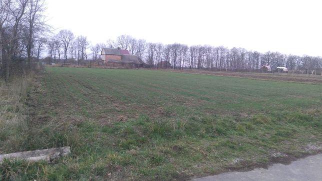 Земельна ділянка в с Бохоники