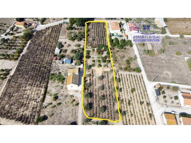 Terreno rústico para cultivo ou aplicação de casas modula...