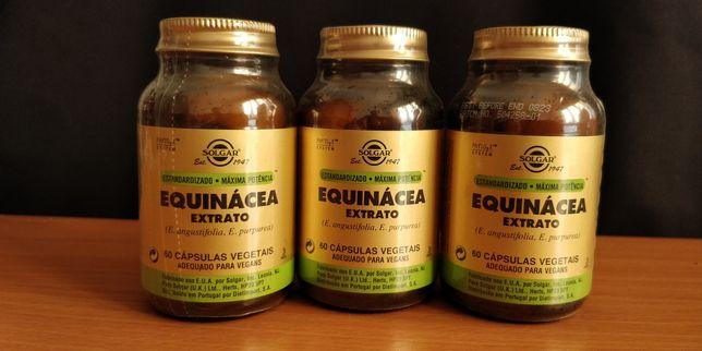Equinacea Solgar