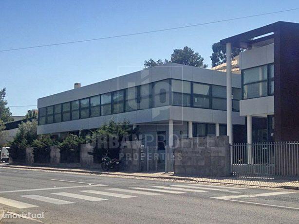 Escritório para arrendamento em Birre/Bicuda/Torre