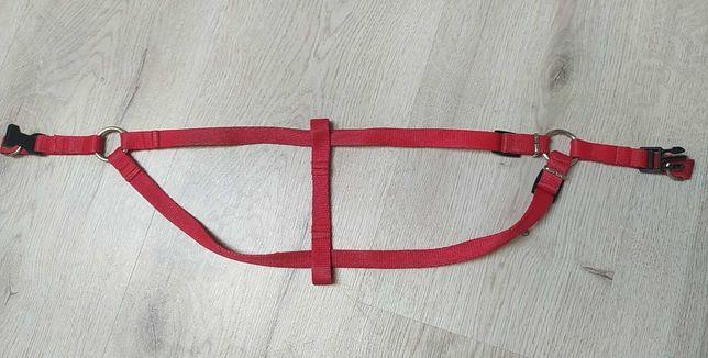 Szelki dla psa step-in, max. 60 cm