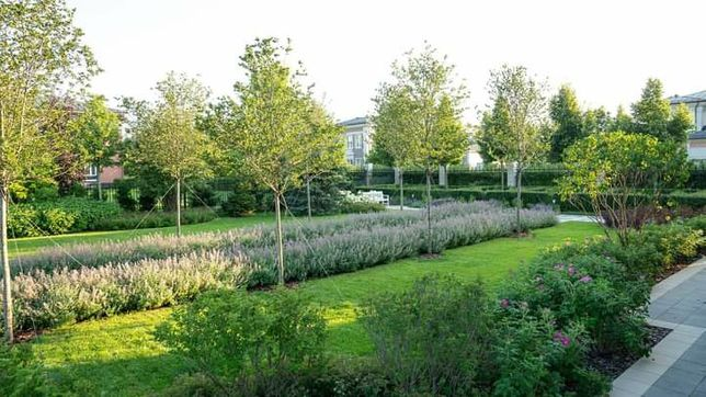 Ландшафтный дизайн, благоустройство, озеленение