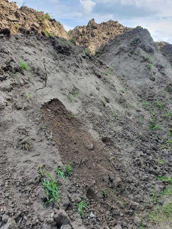 Ziemia humus pod trawnik 10 ton z transportem TANIO