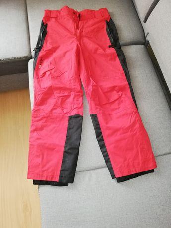 Spodnie narciarskie L
