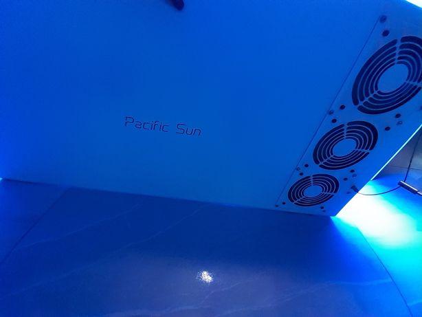 Lampa Pacific sun althea T5 8x80w wifi